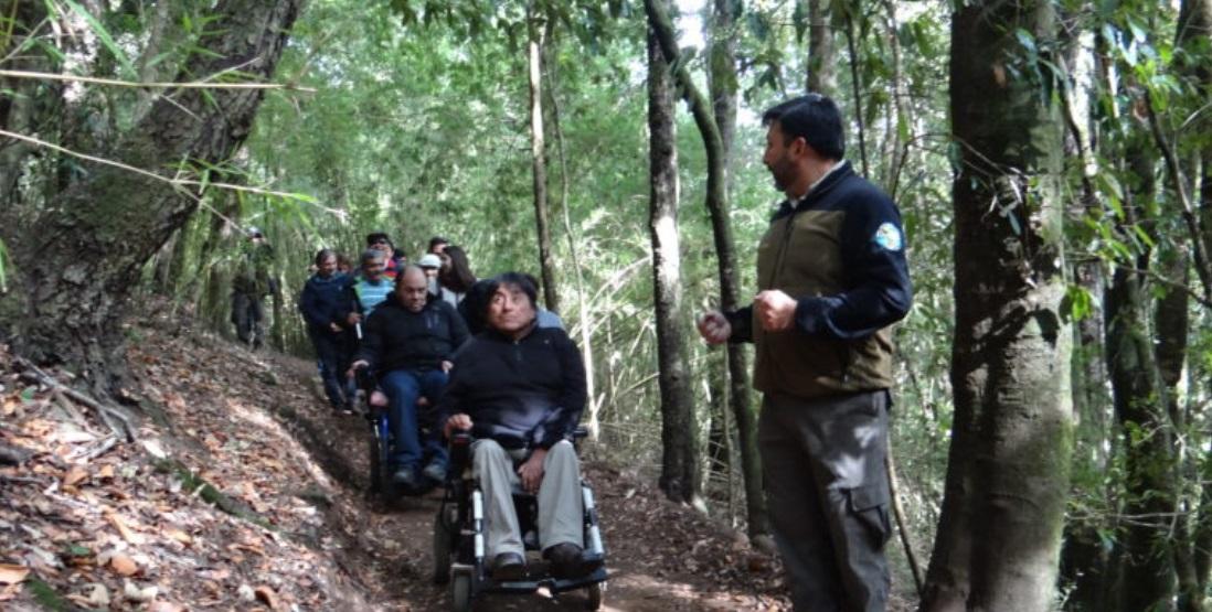 A imagem mostra a trilha inclusiva. Muitas árvores e um trecho cortando onde cadeirantes e pessoas com deficiência visual seguem o guia turistico